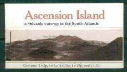 Ascension Is 1981 Pictorials, Booklet 4 Panes, Cyl. #'s MUH - Ascension (Ile De L')