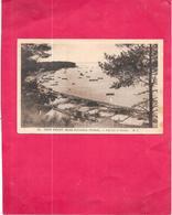 PETIT PIQUEY - 33 - Bassin ARCACHON - Vue Sur Le Bassin - DELC33 - - Arcachon