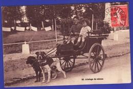 Attelage De Chiens Saint Firmin Sur Loire 1928 2 Enfants (Très Très Bon état )  +1601) - France
