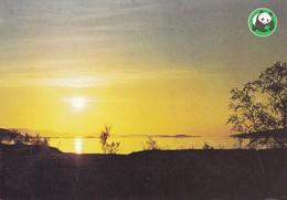 Summer Lake Landscape - Paysage De Lac D'été - WWF Panda Logo - Sunset - Fleurs, Plantes & Arbres
