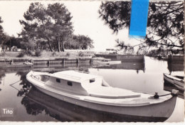 Yhn- 33 Gironde Cpsm  ANDERNOS Les BAINS   492 - Andernos-les-Bains