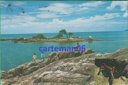 Malaysia - Palau Ular, Kuantan - Malaysia