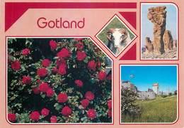 D1457 Gotland - Suède
