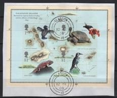 (O) GB - UK (2009) Yv. Bf. 62  /  Birds - Turtles - Lizards - Darwin - Galapagos - Biodiversity - Turtles