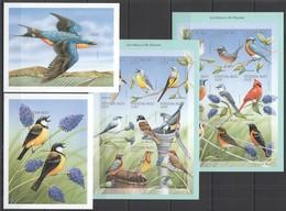 X259 !!! IMPERFORATE BURKINA FASO FAUNA BIRDS PARADIS !!! 2KB(18ST)+2BL MNH - Oiseaux