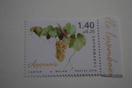 4-259 Vigne Vin Auxerrois Vine Grapes Rebe Trauben Viña Uvas Vite Uva Videira Vindruer  Wijnstok Druiven - Vins & Alcools