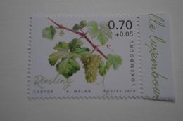 4-261 Vigne Vin Risling Alsace  Vine Grapes Rebe Trauben Viña Uvas Vite Uva Videira Vindruer  Wijnstok Druiven - Vins & Alcools