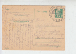 GERMANIA 1957 - Annullo Speciale Illustrato - Pellicano - Pellicani