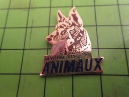 513b Pins Pin's / Rare & De Belle Qualité  THEME : ANIMAUX / CHIEN BERGER ALLEMAND LA VITRINE DES ANIMAUX - Animals
