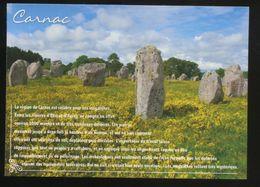 (56) Carnac - Les Alignements De Menhirs - Dolmen & Menhirs
