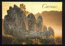 (56) Carnac - Les Alignements De Menhirs Dressés Dans La Lande - Dolmen & Menhirs