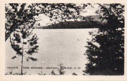 ALONG THE SHORE,INDIAN LAKE - Albany