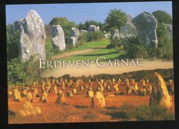(56) Les Alignements De Kerzerho (Erdeven) Et Du Ménec (Carnac). - Dolmen & Menhirs
