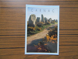 Les Alignements Mégalithiques De Kermario     Menhirs    Carnac    Morbihan - Dolmen & Menhirs