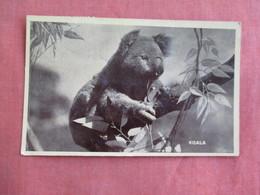 US  Navy Cancel  Passed By Censor  Koala Bear      Ref 3097 - Bears