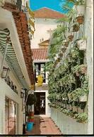 Spain & Circulated, Greetings From Marbella, Calle Gloria, Fuengirola, Lisboa 1974 (1669) - Souvenir De...
