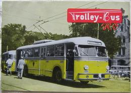 Trolley-Bus H0 Katalog 1955 Schwedisch Englisch - Books And Magazines