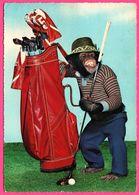 Cp Dentelée - Monkey - Singe Humanisé - Golf - Golfeur - KRUGER - Monos