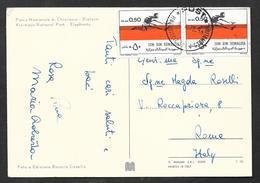1975 SOMALIA SOOMAALIYA ON CARD KISIMAYO NATIONAL PARK - ELEPHANTS - Somalia (1960-...)