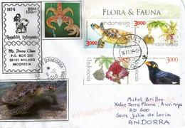 Fauna Von Indonesien (Schildkröte, Usw.), An Das Fürstentum Andorra Gerichteter Brief. - Turtles