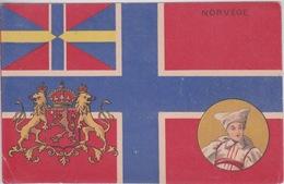 NORVÈGE  - DRAPEAU AUX COULEURS DE NA NORVEGE - FANION  MÉDAILLON - Norvège