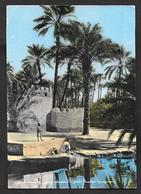 LIBIA LIBYA OASI 1959 - Libye