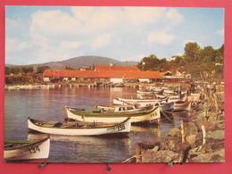 Bulgarie - Mitchourine - Le Port - Très Bon état - Scans Recto-verso - Bulgarie