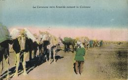 Syria, Camel Caravan To Druze City Of السويداء As-Suwayda (1910s) Postcard - Liban
