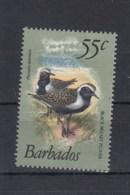 Barbados (BBK) Michel Cat.No. Mnh/** 535 Birds - Barbados (1966-...)