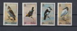 Belize (BBK) Michel Cat.No. Mnh/**  487+ 490/492 Birds - Belize (1973-...)
