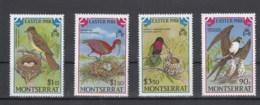 Montserrat (BBK) Michel Cat.No. Mnh/** 701/704 Bird - Montserrat