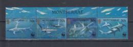 Montserrat (BBK) Michel Cat.No. Mnh/** 1109/1112 Sharks - Montserrat