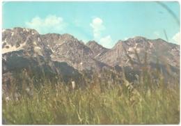 BA - Pogled Na Volujak - Ed. Interpublic - [vue Sur Le Mont Volujak / View / Ansicht] - Bosnie-Herzegovine