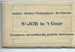 Job In 't Goor Institut Médico Pédagogique St Charles ( 12 Kaarten ) - Brecht