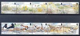 GUERNSEY (WEU 379)  +NATUUR/BLOEMEN - Oiseaux