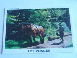 Les Vieux Métiers Vosgiens - Le Débardage - Cpm - Other Municipalities