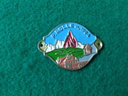 DISTINTIVI DA BASTONE Passo Rolle 1984 M. - Italia
