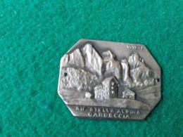 DISTINTIVI DA BASTONE Rifugio Stella Alpina Cardeccia 1949 M. - Italia