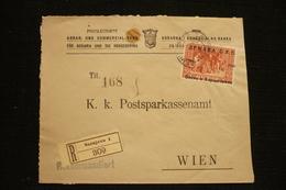 Rare Perfin Bosnie Sarajevo Perforé Lochung PAKB Sur Lettre Priv. Agrar Und Commercial Bank 1918 - Bosnie-Herzegovine