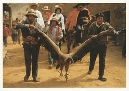 POSTCARDS FROM BEAUTIFUL PERU./ B - Peru