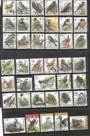 Set Used Buzin Fauna Birds Oiseau Vogel _ Special And High Value !!! - 1985-.. Oiseaux (Buzin)