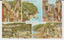 Postcard - Clovelly Five Views - Unused Very Good - Postcards