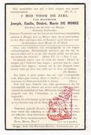 DP Advokaat Stafhouder Voorzitter - Joseph E. De Monie Demonie ° Brugge 1879 † 1936 - Images Religieuses