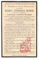 DP Maria Th. Demol ° Watou Poperinge 1843 † 1923 X L. Nevejans - Images Religieuses