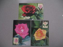 Carte-Maximum 1999  N° 3248 à 3250 - Maximum Cards