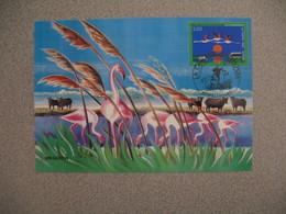 Carte-Maximum 1999  N° 3240 - Cartes-Maximum