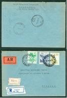 Yugoslavia 1964 Bahnpost Railway Post Nis-Beograd 55 Recommended Letter Krusevac - Lettres & Documents