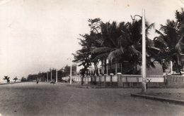 Dahomey. Cotonou. Une Rue. - Benin