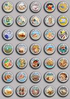 35 X Seashells Sea Shells  PIN's (1inch/25mm Diameter) SET 2 - Animals