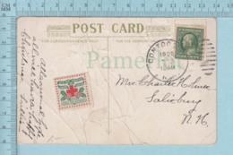 CP Avec Vignette 1909, American Red Cross Merry Christmas Happy New Year, Sur Carte Postale - Vignettes De Fantaisie